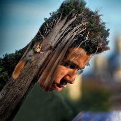Portrait - Retrato (COLINA PACO) Tags: portrait retrato ritratto ragazzo chico boy arbol arboles arbres arbre albero alberi tree trees photoshop photomanipulation fotomanipulación fotomontaje franciscocolina
