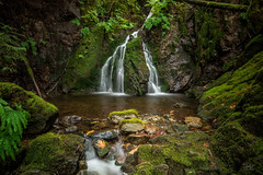 Grant Lake Falls SEP 2018 (cdnfish) Tags: cowichanvalleyregionaldistric britishcolumbia canada cowichanvalleyregionaldistrict ca vancouverisland bc cobblehill shawniganlake water waterfall landscape landscapephotography longexposure longexposures pool moss atmosphere rocks rock rural tree trees temperaterainforest fern sony sonya7m2 a7m2