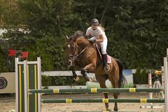 DSC_6739_1 (emina.knezevic) Tags: equestrian showjumping equestrianphotographer horseriding equestriansportphotography nikon nikond3200 nikonphotography nikonsport horsebackriding equeatriansports sport sportphotography