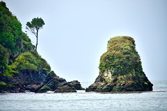#naturephotography #ahui #beach #nikonphotographers #visitchile #chiloe #island #pacific #ocean https://www.facebook.com/FotoMiradaChile/https://www.instagram.com/fotomirada_chilehttps://500px.com/fotomiradachile https://www.flickr.com/photos/fotomirada/ (PatricioVasquezChile) Tags: pacific island naturephotography ocean nikonphotographers visitchile ahui chiloe beach
