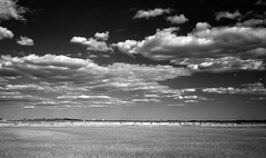 Great wide open (Rosenthal Photography) Tags: felder dänemark houvig asa200 35mm ff125 windmühle 20180701 urlaub nordsee bauernhof ilfordlc2912920°c11min ilfordsfx schwarzweiss olympus35rd analog infrarot landscape mood summer july danmark denmark blackandwhite clouds olympus olympus35 fzuiko zuiko 40mm f17 ilford sfx sfx200 redfilter filter lc29 129 epson v800