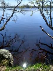 IMG_20180512_132106_HDR (Rustam Bikbov) Tags: горовалдайскоеозеро озеро май 2018 may lake