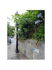 city lanes (chrisinplymouth) Tags: wall lamppost path pavement plant shrub street corner plymouth devon england uk cw69x city