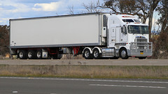 Almost KENWORTHs (2/2) (Jungle Jack Movements (ferroequinologist)) Tags: churchill wollongong hume highway lachlan valley way yass nsw new south wales kenworth spot difference hp horsepower big rig haul haulage freight cabover trucker drive transport carry delivery bulk lorry hgv wagon road nose semi trailer deliver cargo interstate articulated vehicle load freighter ship move roll motor engine power teamster truck tractor prime mover diesel injected driver cab cabin loud rumble beast wheel exhaust double b grunt twins same alike