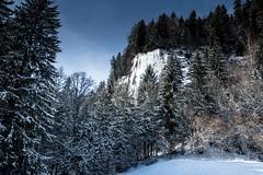Massif du Mont-Blanc, 119 (Patrick.Raymond (5M views)) Tags: mont montagne alpes hautesavoie megève combloux neige hiver gel froid nikon