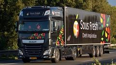 NL - Sous Fresh DAF XF 106.440 SSC (BonsaiTruck) Tags: sous fresh daf airbrush lkw lastwagen lastzug truck trucks lorry lorries camion caminhoes