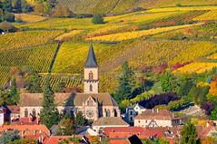 Ribeauvillé (Haut-Rhin, F) (pietro68bleu) Tags: alsace vignoble vignes église coteau village couleursautomnales