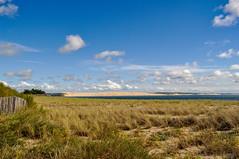La dune du Pilat (balese13) Tags: arcachon d5000 nikonpassion pilat barrière bassin bleu ciel dune dunedupilat eau flickr herbe nikon nuages plage sable capferret