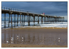 The pier at Saltburn (Photography And All That) Tags: pier saltburn piers saltburnpier sea seas wave waves water ocean beach beaches bird birds sand sands sky horizon landscape landscapes sony sonyalpha7mark3 sonyilce7m3 sonyalpha ilce7m3 whitephotoborder outdoors outdoor yorkshire yorks coast coastal colour reflections clouds cloudy
