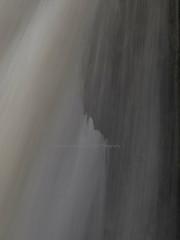 (Turbogirlie) Tags: pontneddfechan afonmellte afonnedd afonsychryd silicamines upperdinassilicamines lowerdinassilicamines sssi siteofspecialscientificinterest trees woodland breconbeaconsnationalpark geology autumnwalks autumncolours autumn2018 walksinautumn walksinwales findyourepic waterfallcountry sgwdyreira uppersychrydfalls afonhepste ddinas ddinasrock dinasrock