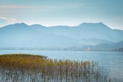 Der Steg (Chris Buhr) Tags: tegernsee bayern bavaria dunst dusty fog steg see lake landschaft landscape autumn leica m10