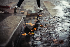 Leave (ewitsoe) Tags: paris france pddle refelction city urban woman feet legs leaves puddle reflect raining water shadows bokeh tone hurry travel traveling wander run cityscape canon