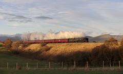 Set in the Pennines (EltonRoad) Tags: 35018 britishindialine merchantnavy rebuilt class steam train railway line great ormside pendle dalesman pennines settle carlisle sc appleby westcoast cumbria