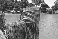 From China Camp Village Pier in Monochrome (sswj) Tags: chinacamp marincounty sanrafael sanpablobay northerncalifornia scottjohnson viewfullscreen dslr fullframe nikond600 nikkor28300mm naturallight availablelight existinglight composition chinacampstatepark pier rope abstractreality monochrome blackandwhite