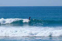 IMG_6895 (palbritton) Tags: surf surfing surfer singlefin longboard longboardsurfing surfcontest