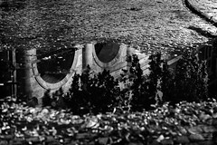 (ale_brando) Tags: puddle rain cobbles reflex archs trees church street sidewalk streetphotography dof monochrome roma rome romebynight silverefexpro niksoftware nikonfx fx d700 water