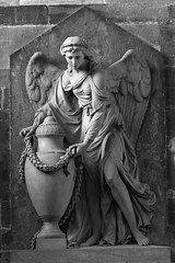 angel (marsupium photography) Tags: cathedral glasgow scotland blackwhite
