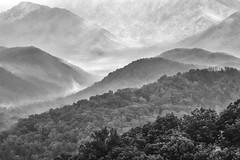 Smoky Smoky (Modkuse) Tags: greatsmokymountains mountains nikon nikondslr nikond100 tokina tokinaaf2870mmf2628 nature natural landscape monochrome bw blackandwhite
