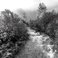 ile 2018-154 (Agirard) Tags: river brook nb bw blackwhite monochrome water clouds trees fall autumn batis batis18 18mm 218mm zeiss sony a7ii landscape