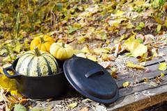 MiniDutchOven (UtahScouts) Tags: pumpkin dutchoven barebones voiceofscouting thanksgiving fall recipes