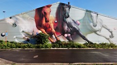 SuperA / Australiëstraat - 24 sep 2018 (Ferdinand 'Ferre' Feys) Tags: gent ghent gand belgium belgique belgië streetart artdelarue graffitiart graffiti graff urbanart urbanarte arteurbano ferdinandfeys supera