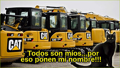 "EL ""BAUTIZO"" DE TU MASCOTA (consejosdelimpieza) Tags: humor chiste mascotas gatos nombres llamar curioso"