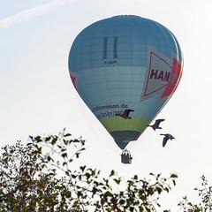 Heißluftballon No.2 (p.schmal) Tags: olympuspenf hamburg farmsenberne heisluftballon