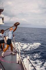 Mini-Olympics Competition at Sea (Serendigity) Tags: hydrographicservice hmasflinders miniolympics sport australia kodachrome royalaustraliannavy personnel sportsday 35mm film slide