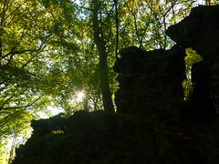 Lavaklippenweg (Jörg Paul Kaspari) Tags: wanderung wandertour herbst autumn fall 2018 diebergkraterseetour lava lavaklippe lavaklippen buchenwald mosenberg