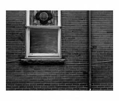 Window in the Holy Innocents Adoration Chapel (Richard C. Johnson: AKA fishwrapcomix) Tags: panasoniclumixg9 20mmf17 blackandwhite bw monochrome downspout building outdoor architecture selfportrait shadows duluth minnesota alley virginmary stainedglass brick modernity icamesofarforbeauty sictransitgloriamundi