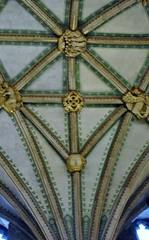 Tewkesbury Abbey (carolyngifford) Tags: tewkesburyabbey tewkesbury vaulting decoration