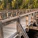Grand Blanc Bicentennial Bridge