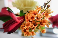The Arrangement (hoffler_pictorials) Tags: bouquet beautiful lovely orange yellow red pointandshoot sonydscrx100m5 pretty flowers