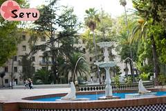 Fuente de Focas (Seruru) Tags: españa spain algeciras parque park arboles trees fuente fountain focas seals agua water スペイン アルへシラス 公園 木 水 噴水 海豹