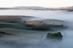 Lever du soleil, Marchastel, Lozére (lyli12) Tags: brume leverdesoleil aubrac lozère été paysage landscape languedocroussillon france célinelajeunie