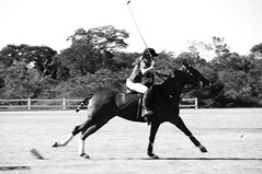 Chicas for Charity (Alejandro Soberanis Fotos) Tags: the season sharing chichas for charity polo match ecocentro solar panels ahorro energetico mérida yucatán campeche cancun quintana roo