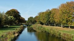De Schipbeek bij Batmen (2) (Cajaflez) Tags: bomen autumn autun herbst herfst bathmen schipbeek