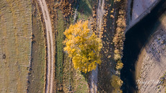 October 28, 2018 - Looking down at fall colors. (Tony's Takes)