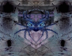 The Spider (rhonda_lansky) Tags: creepy spider surreal bug purple face mask mirror mirrored flip flipped symmetrical artistic art aurorarose1st aurorarose1start mirrorart nature macro photograph facial creations formations design abstractart visual abstractoutdoors outdoor mirroredshapes mirroredabstract symmetricalart expressive lansky rhonda pattern organic poems shortstories storys writing faces fantasy cutandpaste microsoftpaint artwork mirroredartwork michigan michiganart mirrorography
