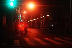 All It Needed Was A Passing Train (N A Y E E M) Tags: man bicycle night light availablelight mood atmosphere street shanghai china carwindow