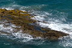 Roca y espuma (Anavicor) Tags: océano mar mer agua roca olas espuma foam paisaje marina atlántico saintmalo bretaña bretagne brittany france francia nikon dslr d5300 tamron anavicor anavillar villarcorreroana correro