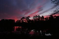 ...dawn (Jim Atkins Sr) Tags: sunrise dawn cloudsstormssunsetssunrises cloudscape clouds redclouds lake northcarolina fairfieldharbour panasonic fz80