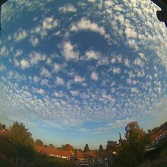 Bloomsky Enschede (October 16, 2018 at 05:20PM) (mybloomsky) Tags: bloomsky weather weer enschede netherlands the nederland weatherstation station camera live livecam cam webcam mybloomsky