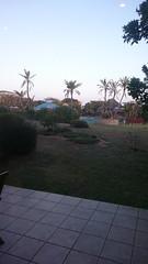 DSC_3508.jpg (taarhaug) Tags: gardenroute pinnaclepoint mosselbay westerncape southafrica za