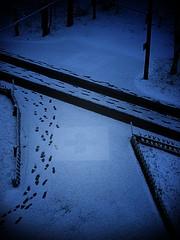 Das rote Kreuz (Maquarius) Tags: kreuz krankenhaus klinik deegenberg winter schneedecke rot