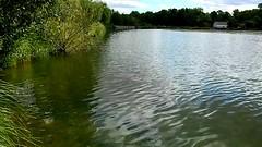 DSCN5153 nature paysage 15 (lac reflets vagues) Vallières (jeanchristophelenglet) Tags: santeuilfranceétangdevallière nature natureza paysage landscape paisagem reflet reflection reflexo