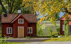 Cottage (RdeUppsala) Tags: uppland house casa campo cabaña höst otoño árboles autumn countryside cottage höstfärger trees träd árbol landscape landskap paisaje ricardofeinstein sweden suecia sverige