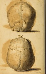 This image is taken from Essays on phrenology : or an inquiry into the principles and utility of the system of Drs. Gall and Spurzheim, and into the objections made against it (Medical Heritage Library, Inc.) Tags: gall f j franz josef 17581828 spurzheim g johann gaspar 17761832 phrenology brain insanity mental disorders medicalheritagelibrary cushingwhitneymedicallibrary americana date1822 idessaysonphrenolo00comb