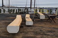 The beginnings of Caroline, a new, five-log canoe (Chesapeake Bay Maritime Museum Photos) Tags: log canoe caroline shipyard cbmm chesapeakebaymaritimemuseum fivelog chesapeake history miles river