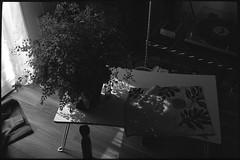 Sanrizuka (seeaurora) Tags: フィルム ポジフィルム キャノネット film レンジファインダー モノクロ slidefilm